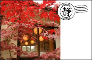 Red maples at Shizuka entrance